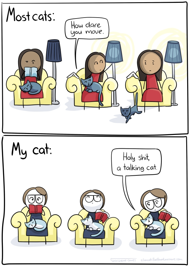 "Most cats: person sits reading with sleeping cat on lap. Person reaches to turn on lamp, cat looks up and says ""how dare you move"". Cat leaves, person is sad. My cat: I sit reading with cat on lap. We both look up to above panel where cat is saying ""how dare you move"". My cat says to me ""holy shit, a talking cat."""