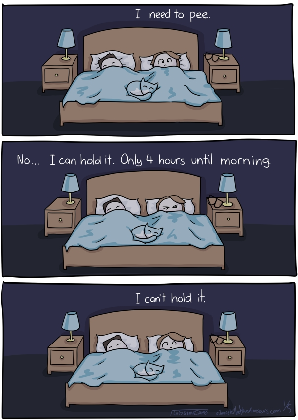 3 panels. Panel 1: me, my partner and our cat are in bed. He and the cat are asleep. I am awake. The words 'I need to pee' are written above me. Panel 2: I close my eyes. 'No ... I can hold it. Only 4 hours until morning.' Panel 3: my eyes are open. 'I can't hold it.