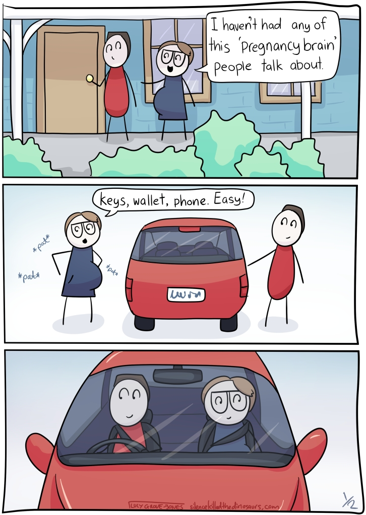 """Comic with three panels. Panel 1: my partner and I are leaving the house, I am clearly pregnant. I say """"I haven't had any of this 'pregnancy brain' people talk about."""" Panel 2: We are getting in the car. I am patting my pockets and saying, """"keys, wallet, phone. Easy!"""". Panel 3: we are driving."""
